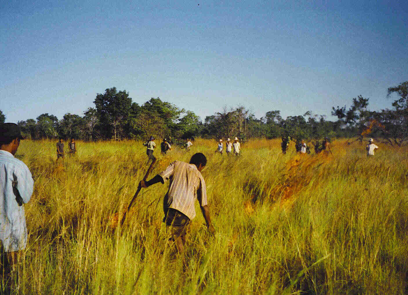 Rural Development, Livelihoods and Conservation